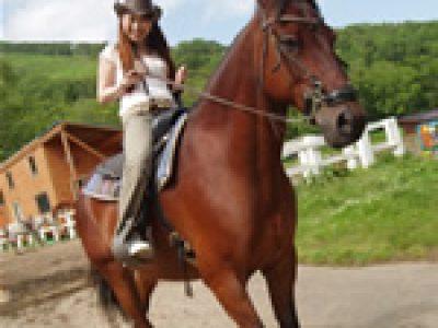 30分乗馬体験コース:3,240円(税込)